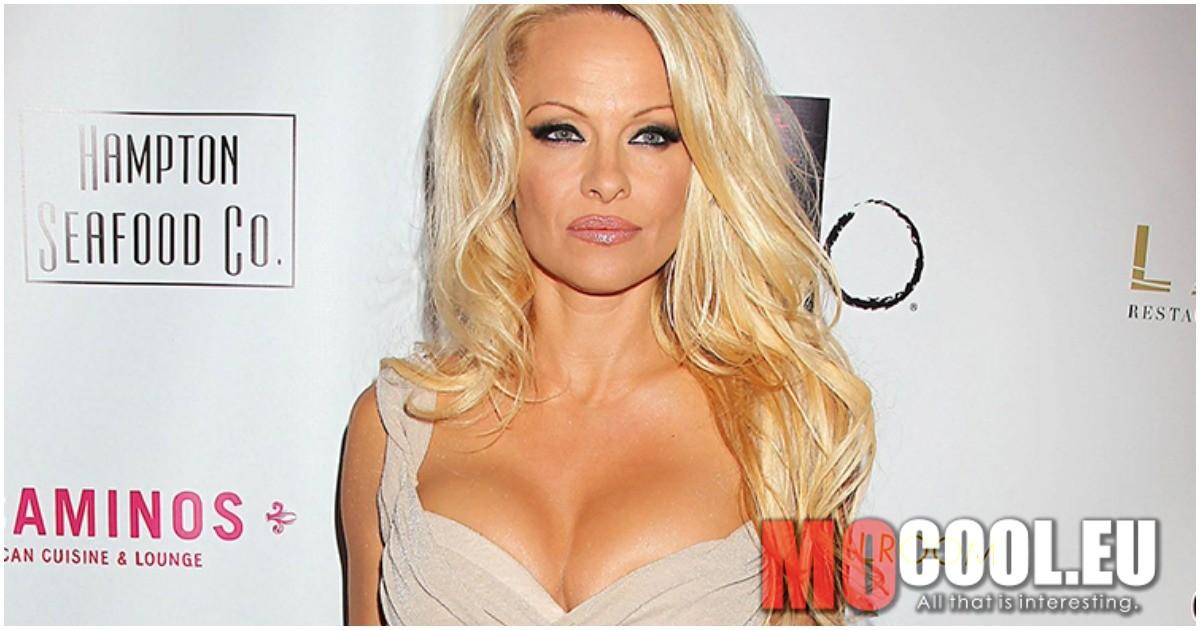 Pamela Anderson 20 éves fia ma az egyik legkeresettebb férfi modell.