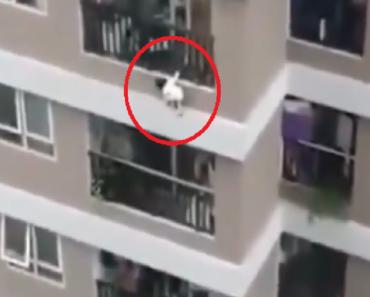 Videó! Egy kétéves kislány kiesett a 12. emeletről. Egy futárnak köszönhetően túlélte