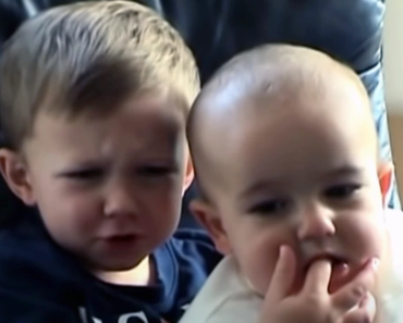 """Így néznek ki ma, 14 évvel később a """"Charlie megharapta az ujjam"""" videó gyerekei"""